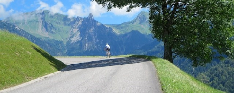 Diamond Cycle Tours Tour Classic Alpes  Tour de France