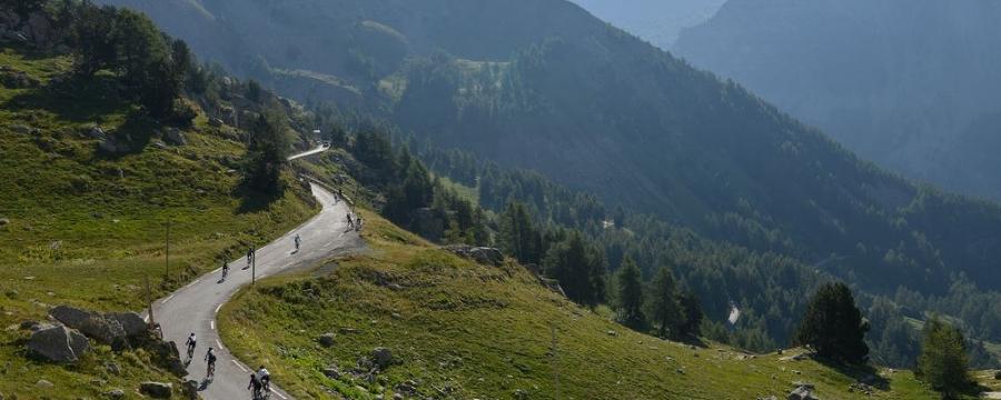 Hautes Route Diamond Cycle Tours Tour de France